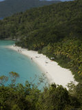 Overhead of Trunk Bay Photographic Print by Margie Politzer