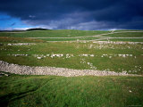 Limestone 'Pavements', Dry Stone Walls and Moody Skies, All Characteristics of the Dales Photographic Print by David Else