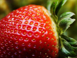 Strawberry Photographic Print by Ray Laskowitz
