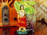 Hula Girl Souvenir with Radio Photographic Print by Linda Ching