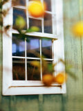 Wooden Framed Window of Country House Photographic Print by Linda Ching