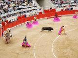 Bullfight at Placa De Braus Monumental, Barcelona, Spain Fotografisk trykk av Dennis Johnson