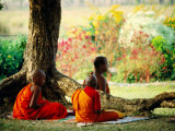 Buddhist Monks at Meditation under Tree Photographic Print by Lindsay Brown