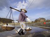 Woman Harvesting Salt in Salt Fields or Pans Photographic Print by Dan Gair