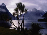 Milford Sound in Morning Mist Photographic Print by Holger Leue