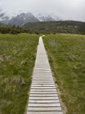Boardwalk in Hooker Valley Photographic Print by Holger Leue