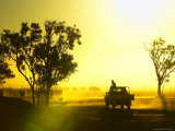 Silhouetted Cattle Muster at Sunset, Armraynald Station Photographic Print by Johnny Haglund