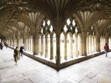 Inside the Cloisters at Canterbury Cathedral Photographic Print by Orien Harvey