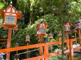 Lantern Stairway, Kurama Dera, Kitayama Area Photographic Print by Greg Elms