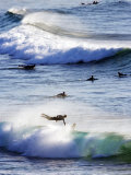 Surfing at Southern End of Bondi Beach Photographic Print by Oliver Strewe