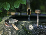 Water Source with Drinking Tools at Golden Pavillion Terrain Photographic Print by Merten Snijders