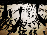 Silhouettes of Pigeons and People, Trafalgar Square Photographic Print by Orien Harvey