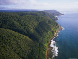 Aerial of Great Ocean Road and Otway Ranges Photographic Print by Rodney Hyett