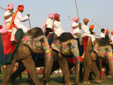 Elephant Polo at the Elephant Festival Photographic Print by John Sones