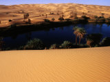 Umm Al-Maa Lake Surrounded by Date Palms and Sand Dunes, Sahara Desert Photographic Print by Anthony Ham