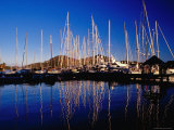 Yachts in Marina at Falmouth Harbour Photographic Print by Richard I'Anson