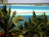 Turquoise Color of Lake Bacalar Photographic Print by Uros Ravbar