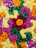 Detail of Floral Decoration Called Pookkallam at Entrance to Shop to Celebrate Onam Festival Photographic Print by Richard I'Anson