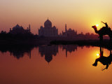 Taj Mahal and Silhouetted Camel and Reflection in Yamuna River at Sunset Photographic Print by Richard I'Anson