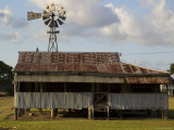 Old Farmhouse with Windmill in Sugar Farming Heartland, Cordelia Photographic Print by Simon Foale