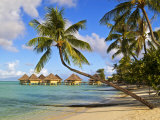 Intercontinental Moana Beach Bora Bora Bungalows Photographic Print by Emily Riddell