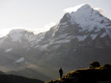 Person Enjoying a Dawn Hike Above Grindelwald with the Wetterhorn Mountain in the Distance Photographic Print by Andrew Peacock