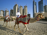 Camels on Beach with High-Rises in Background Photographic Print by Merten Snijders