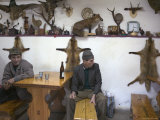 Men Having a Beer in Local Hunting Bar Decorated with Stuffed Animals, Transylvania Photographic Print by Gavin Quirke