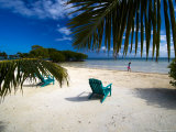 Spanish Lookout Caye Beach Photographic Print by Tim Rock