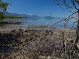Looking South Along Hinchinbrook Passage from the Mangroves at Scraggy Point Photographic Print by Simon Foale