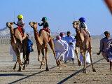 Children Racing Camels Reproduction photographique par Mark Daffey