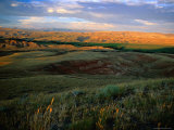 Grasslands and Rolling Hills in the Late Afternoon Sunlight Photographic Print by Charles Cook