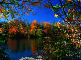 Autumn in the Middlebury Nature Reserve Photographic Print by Charles Cook