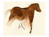 Prehistoric Cave Painting of a Horse with Foal, Altamira, Spain Giclee Print