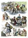 Hungry Irish People Gathering Seaweed for Food, Coast of County Clare, 1800s Giclee Print