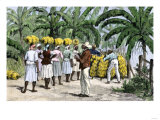 Jamaican Women Carrying Bananas to a Seaport, 1800s Giclee Print