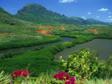 Overlooking a Verdant Green Valley with Hule'Ia Stream and Ancient Menehune Hawaiian Fishpond Photographic Print by Ann Cecil