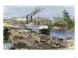 Steamboat Loading Cotton on Buffalo Bayou, Connected to the Gulf of Mexico, Houston, Texas, 1870s Giclee Print