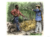 Capture of Nat Turner, Leader of Slave Revolt in 1831 Giclee Print