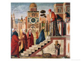 Presentation of Mary in the Temple Giclee Print by Vittore Carpaccio