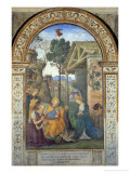 Adoration of the Shepherds Giclee Print by Bernardino di Betto Pinturicchio