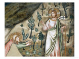 Scenes from the Life of Mary Magdalen: Noli Me Tangere Giclee Print by Pietro Cavallini
