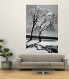 Trees in the Snow Premium Wall Mural by Alfred Eisenstaedt