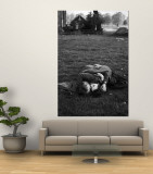 American Soldier Kissing English Girlfriend on Lawn in Hyde Park, Favorite Haunts of US Troops Premium Wall Mural by Ralph Morse