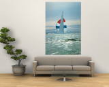 The Sailboat Nefertiti Competing in the America's Cup Trials Premium Wall Mural by George Silk
