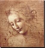 Cabeça de Mulher (La Scapigliata), c.1508 Impressão em tela esticada por  Leonardo da Vinci