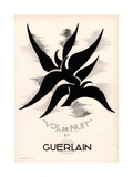 Guerlain, Guerlain Vol De Nuit, Night Light Womens, UK, 1934 Prints