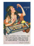 Adams California Fruit Gum, Chewing Gum Sweets, USA, 1910 Prints