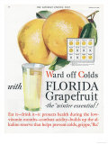 Florida Grapefruit, Colds Flu Fruit, USA, 1920 Art