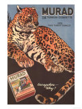 Murad, Cigarettes Smoking Leopards, USA, 1910 Posters